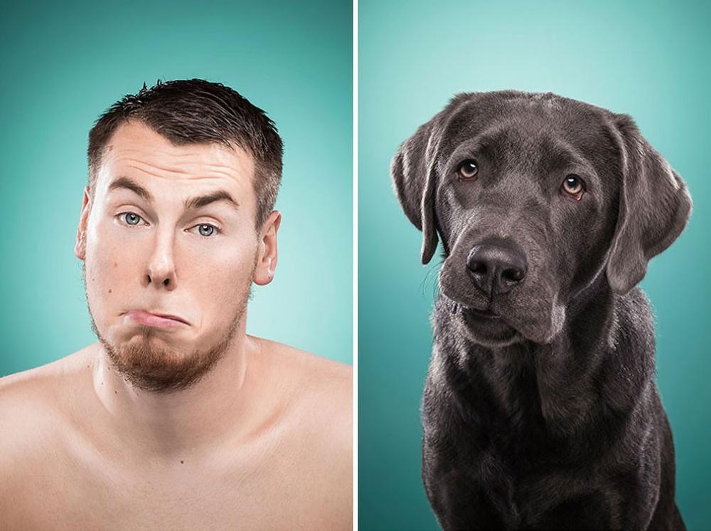 картинки эмоции людей и животных этой